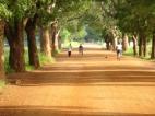 Gravel road near Sandema in Northern Ghana (2009)